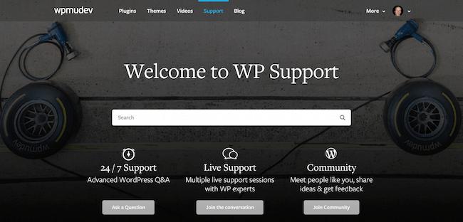WPMU DEV Support