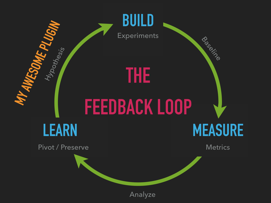 The feedback loop model