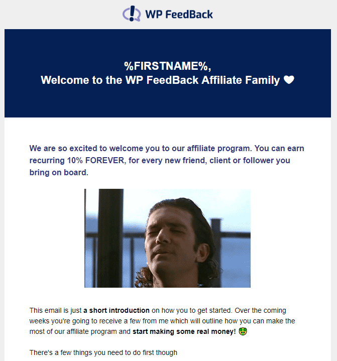 WP FeedBack affiliate email