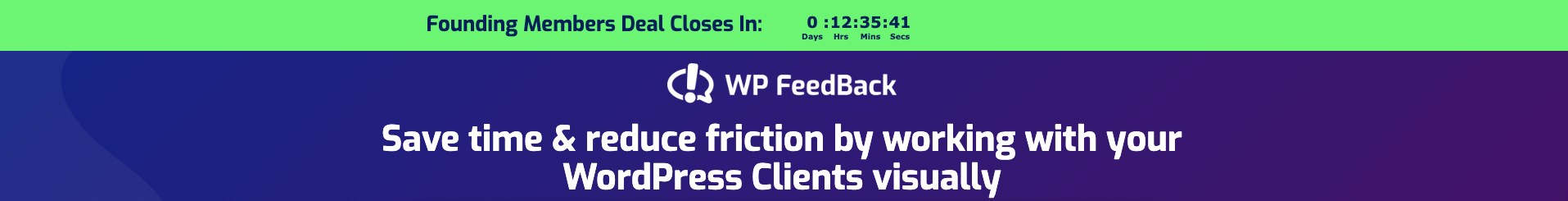 WP FeedBack timer example